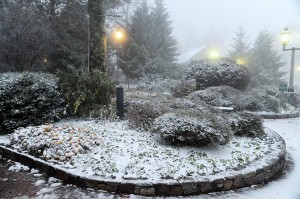 Though certainly not unheard of, October snows, in particular mid October, are pretty rare in Central Virginia.