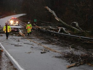 Photos By Ray Uttaro : ©2009 www.nelsoncountylife.com : Crews worked to clear VA Route 56 Thursday morning after a tree fell across the road setting off a sequence of events that caused a fatal accident. Click any photo to enlarge.