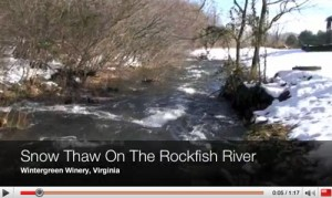 ©2009 www.nelsoncounty.tv : By Tommy Stafford : A screen grab of video from the Rockfish River at Wintergreen Winery.