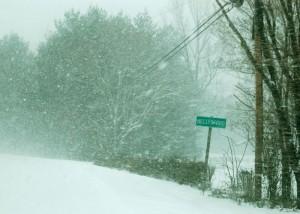 Heavy snow falls in Nellysford, Virginia Saturday morning.