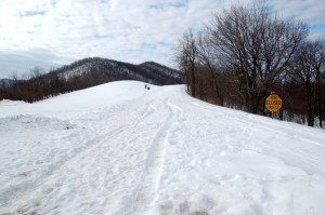 ©2010 www.nelsoncountylife.com : Photos By Tommy Stafford : Deep drifting snow blocks the road as far as the eye can see looking south on the BRP from Reeds Gap. Click any photo to enlarge.