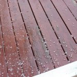 Thunderstorms Produce Small Hail In Parts Of Nelson 4.26.10