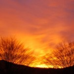 Nelson Sunrise