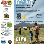 Rockfish Valley Foundation Kite Festival This Weekend : Sunday - April 13, 2014