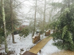 ©2015 Blue Ridge Life Magazine : Photo By BRLM Mountain Photographer Paul Purpura : In appropriate fashion with only hours remaining, Old Man Winter dropped around an inch or snow of fresh snow in the mountains at Wintergreen on Friday morning - March 20, 2015.
