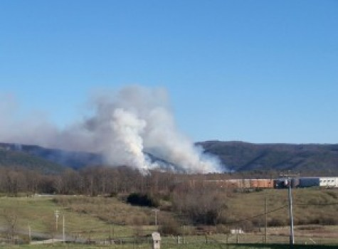 Photo Courtesy of Carole Painter : Mountain wildfire still spreading across area. Around 6:20 pm Friday evening - March 18, 2016 the fire was right behind Mead-Westvaco warehouse off Lofton Road in Augusta County.