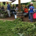Nelson : Hop Picking Continues Later This Month At Blue Mountain Barrel House