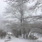 Snowstorm A Bust Down Below But Not Up Top! (Photos)