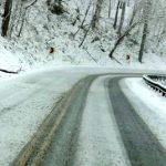 Snow Day Across The Blue Ridge! (Video)