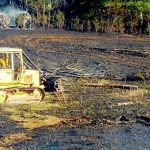 Nelson : Crews Battle Large Wildfire On Embly's Gap Road