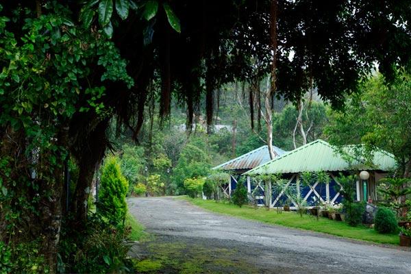 Ponmudi hill station