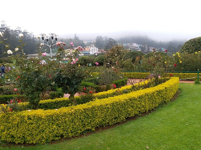 Places to see in ooty