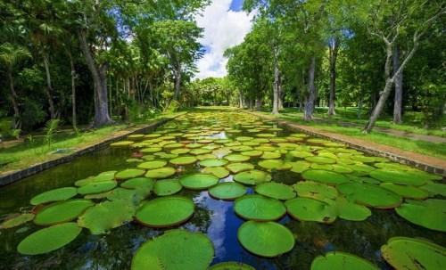 Mauritius travel blog