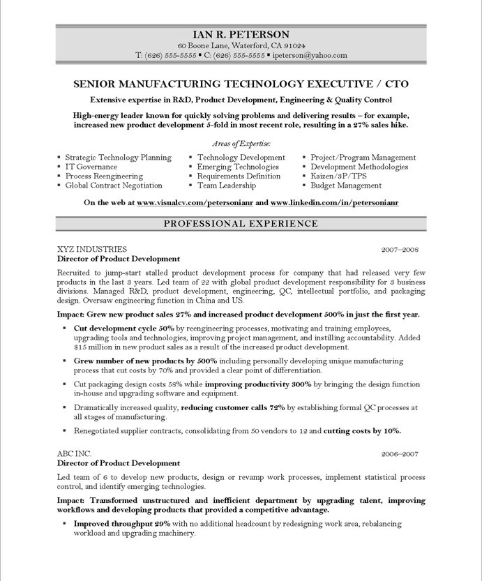 Chief Technology Officer Free Resume Samples Blue Sky