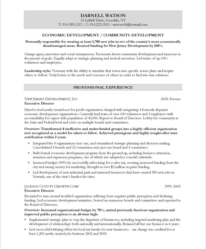 Community Development Executive Free Resume Samples Blue Sky