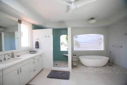 Master bathroom with soaking tub and rain shower