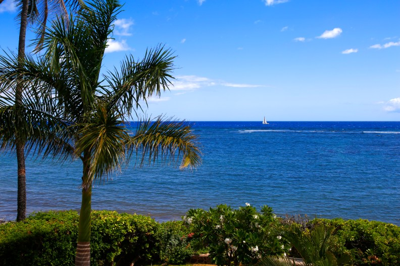 Maui vacation home view