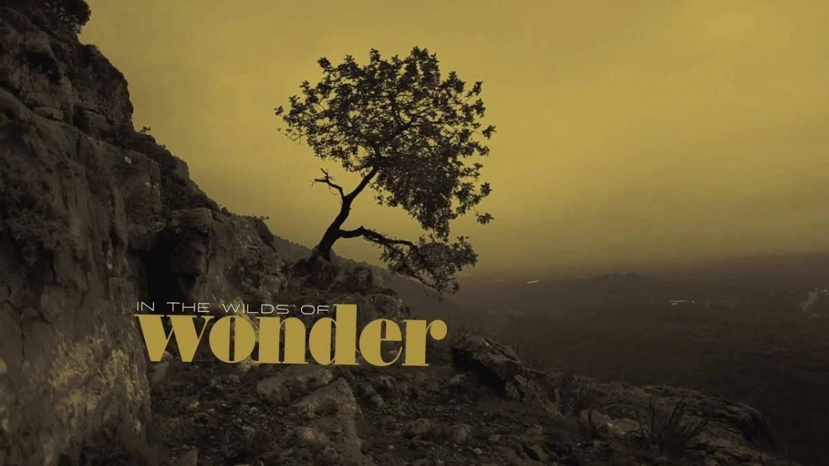 Sonny Landreth The Wilds Of Wonder