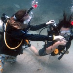 Instructor Phi Phi Island Divemaster Camp
