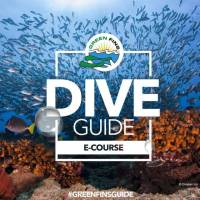 dive guide course koh phi phi