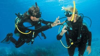 Caribbean Club Bonaire Reviews & Specials | Bluewater Dive ...