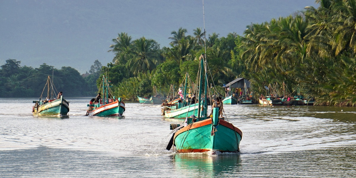 Flotilla of fishermen
