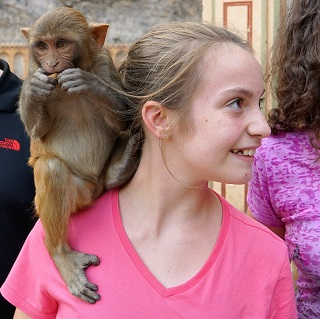 Sophie finds the courage to have a monkey on her shoulder
