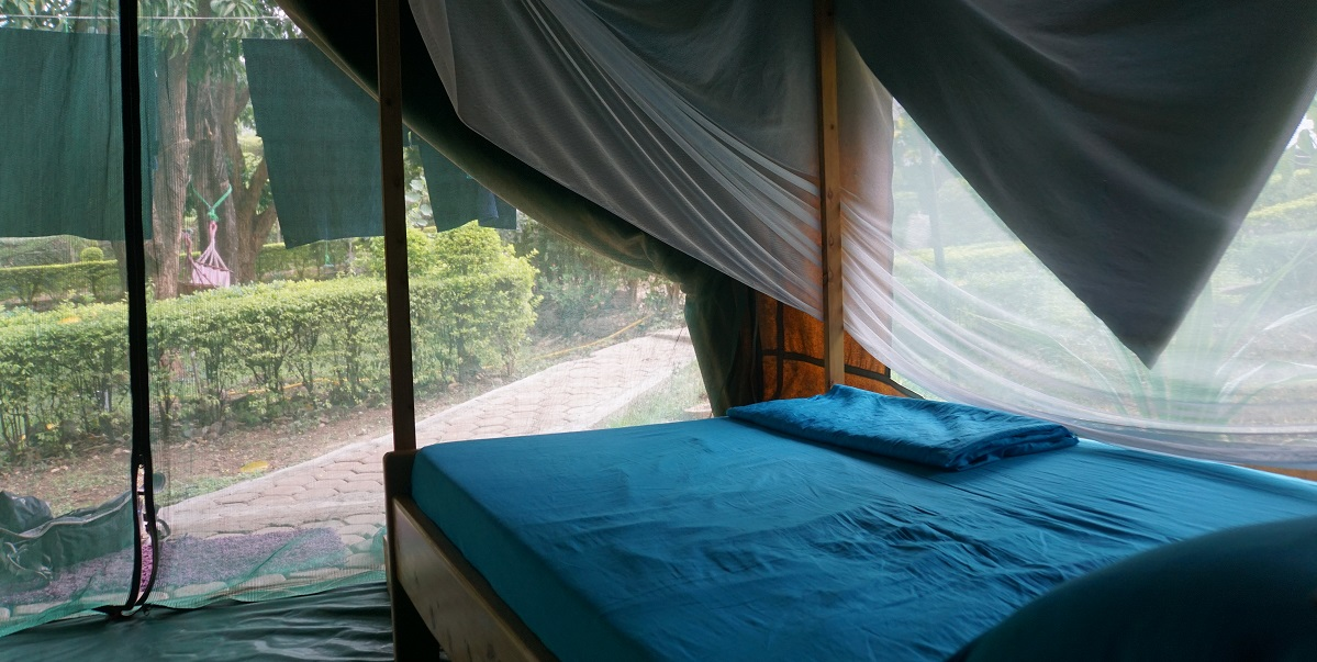 View from inside our tent