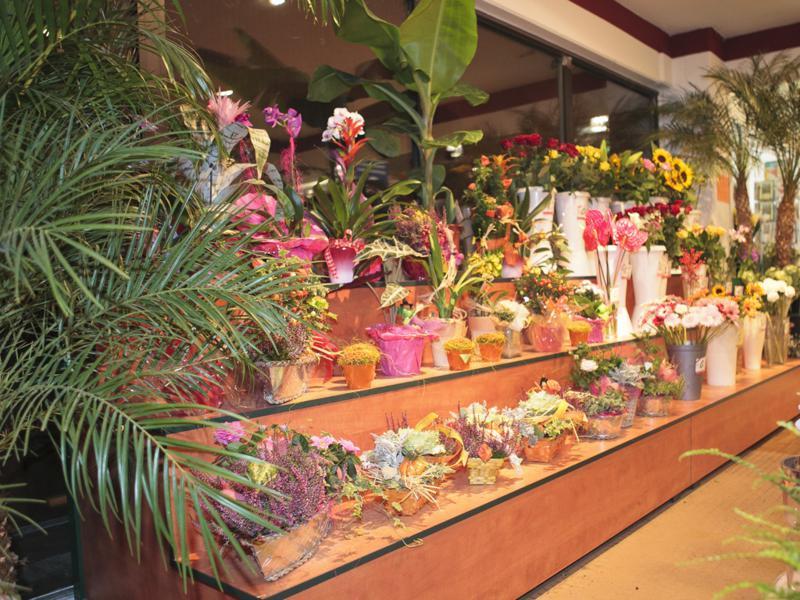 Blumen Wuppertal Finest Von Blumen Wunderschne