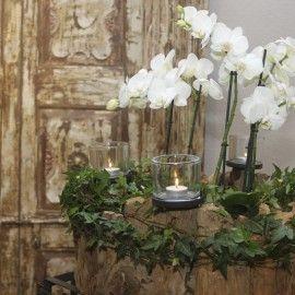 Unser Blumenladen in Augsburg  Blumen Flaschka