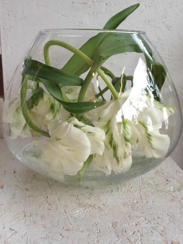 Floristik  Blumen Gtlich