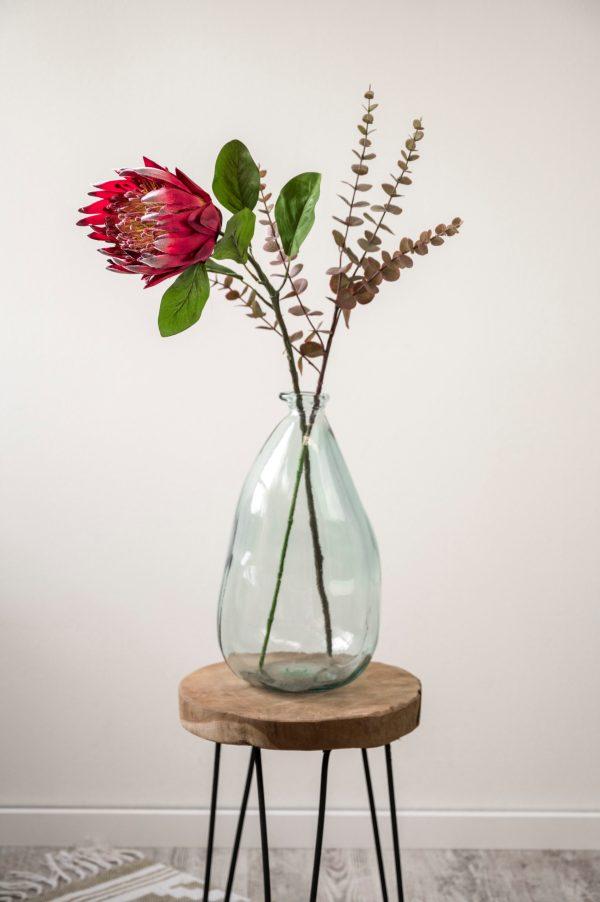 Protea Euca Seidenblumen