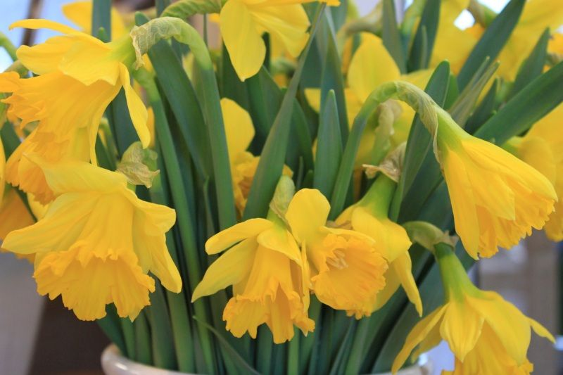 Blumen Kiess Floristik Hochzeitsfloristik
