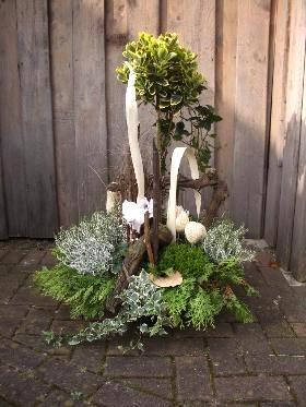 blumen michael winter floristmeister  klnthenhoven