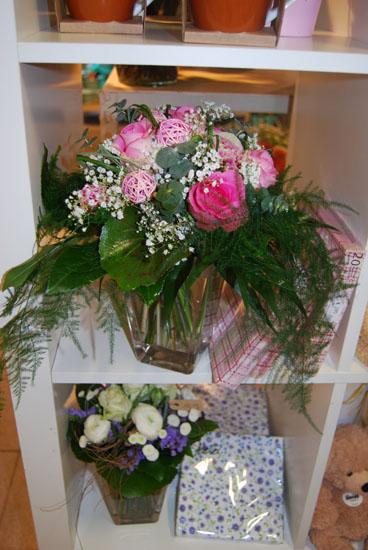Strue Pflanzen Geschenkideen