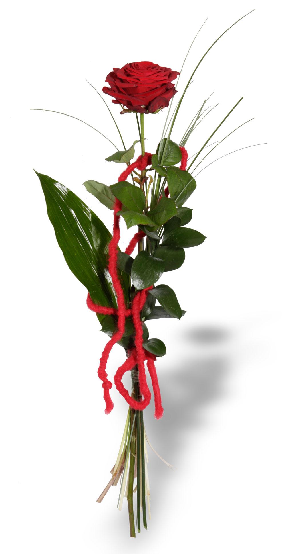 Liebesgru  Blumenstrue  Blumenversand  Blumen Risse