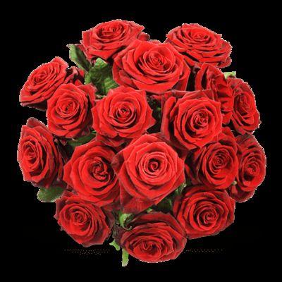 Blumenstrau Einfach rote Rosen von Fleurop auf Blumende