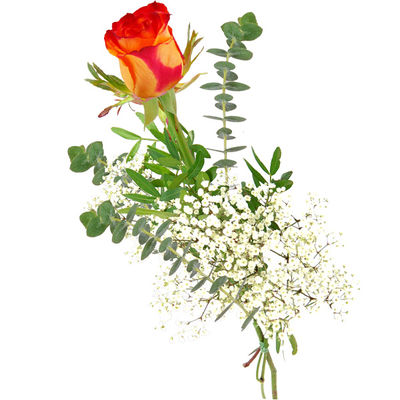 Blumenstrau Einzelne gelbrote Rose von Bluvesa auf Blumende