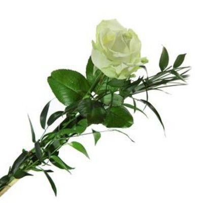 Blumenstrau Einzelne Rose wei von Florito FlowerPost auf