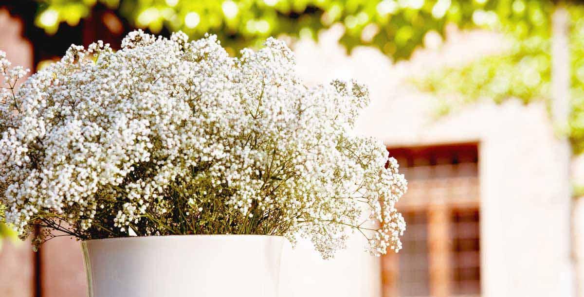 Lieferservice fr Brautstrau Blumen Dekoration in und
