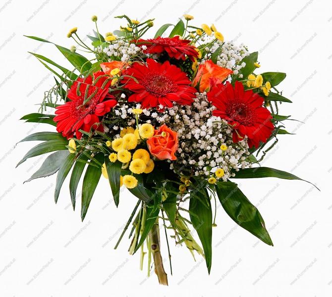 Blumenstrau Julia  Kategorie Geburtstag  Blumenpapa