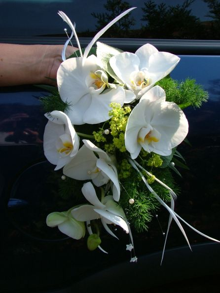 Hochzeitsstrau mit Orchidee  Blumenspezi