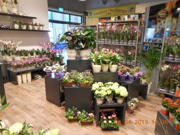 Blumenladen Schweinfurt Blumenversand Edelwei