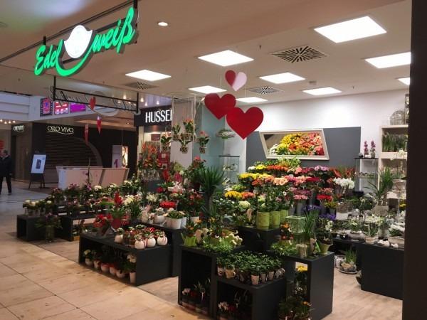 Blumenladen Erfurt  NordhuserStrae  Blumenversand
