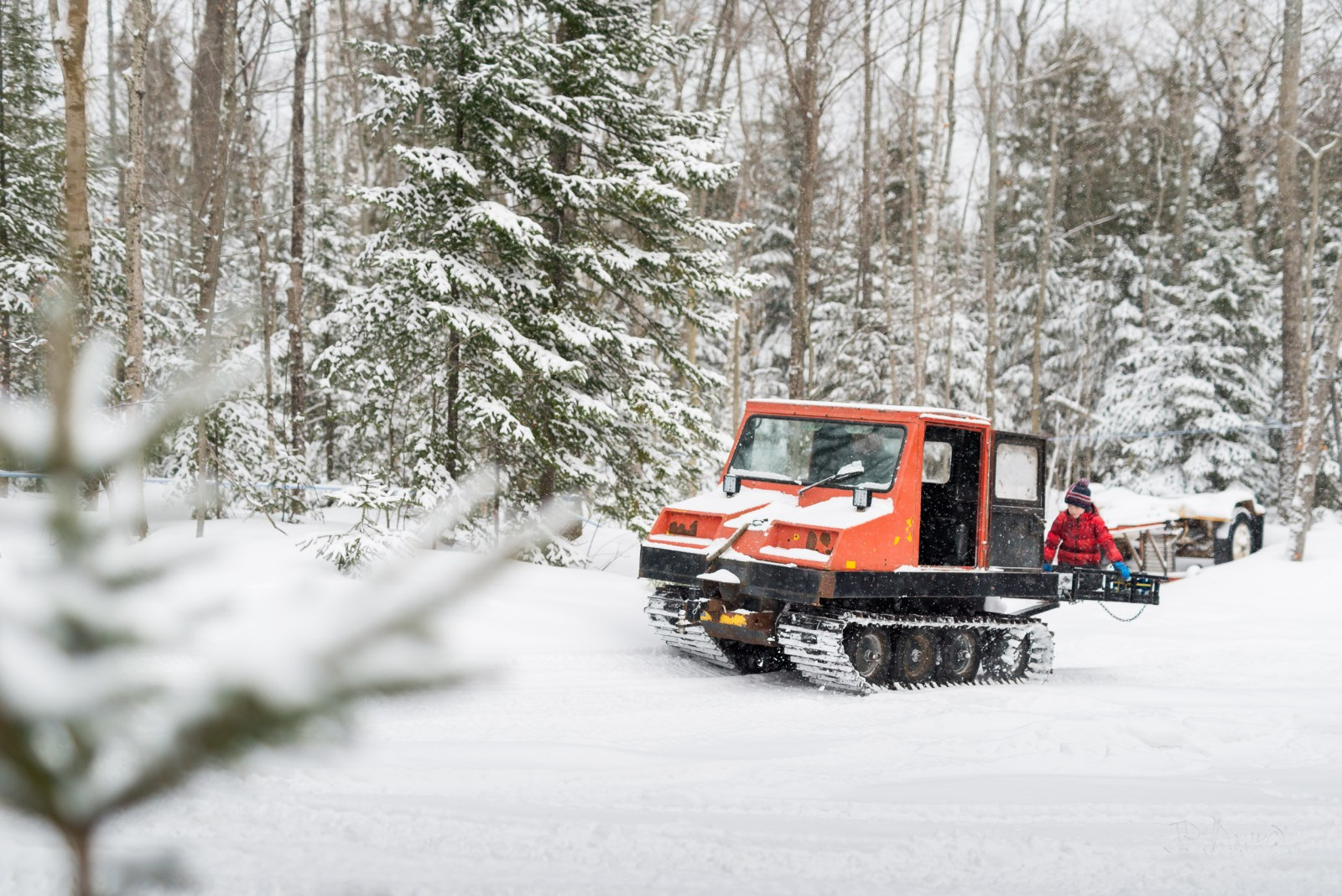 Boy in red winter jacket rides on the back of snow groomer as it treks through snowy Ontario forest