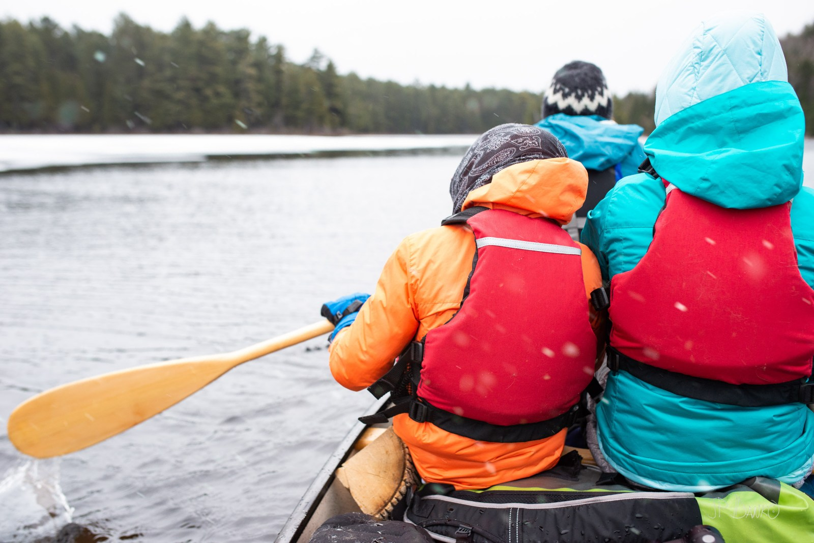 Family Paddling Spring Red Canoe Trip Backcountry Wilderness Blo