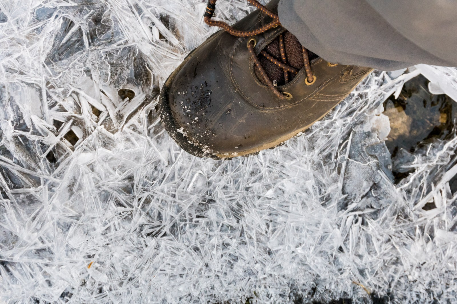 Boot stepping onto thin surface ice of lake as planet warms