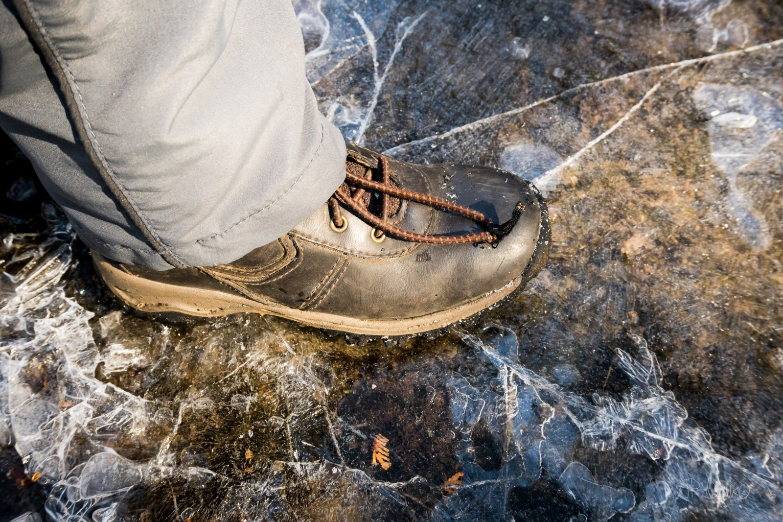 Boot cracks thin surface ice at shore of lake on warming planet