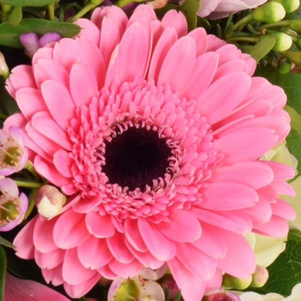 Blumenstrau Herzliche Glckwnsche  Nach Sorte