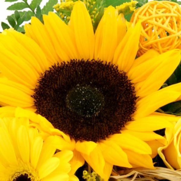 Blumenstrau Sommerfreude  Alle Blumenstrue  Nach